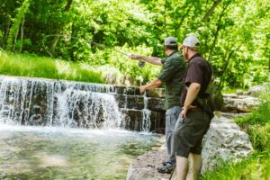 Guided Fishing at Dogwood Canyon