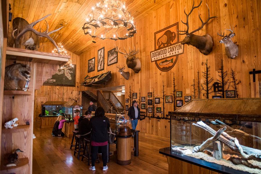 Interior Dogwood Canyon Conservation Education Center